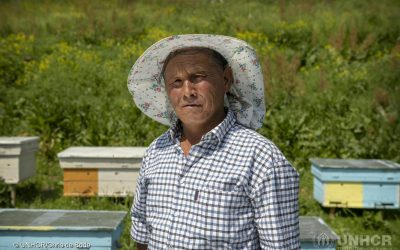 Citizenship tastes sweet to Kyrgyzstan beekeeper