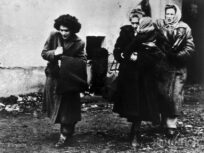 Refugee Convention: Commemorating 70 years of a life-saving treaty