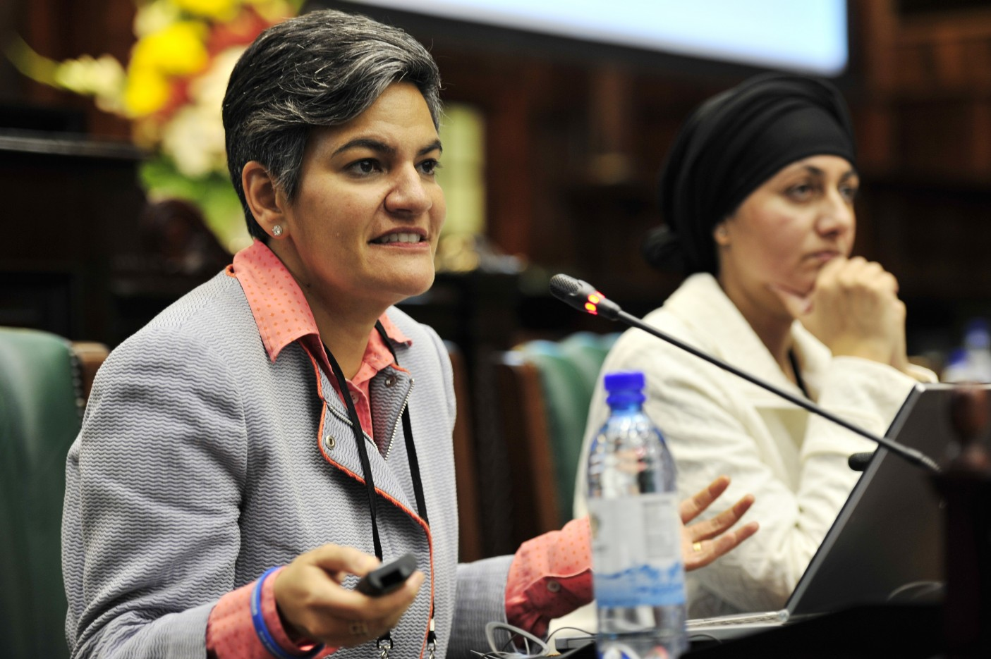 South Africa. The conference on Ensuring Everyone's Right to Nationality: The Role of Parliament in Preventing and Ending Statelessness,Cape Town, 26-27 November 2015. Co-organized by Parliament of South Africa, the Inter-Parliamentary Union and the United