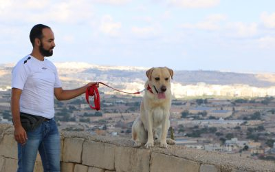 Watch: Dog trainer from Syria rebuilds his life in Malta