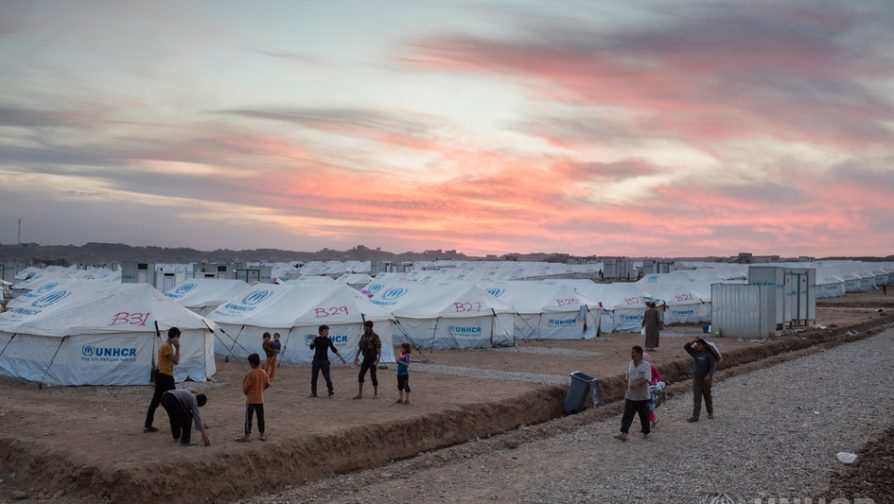 Sweden Supports the Emergency Response in Iraq