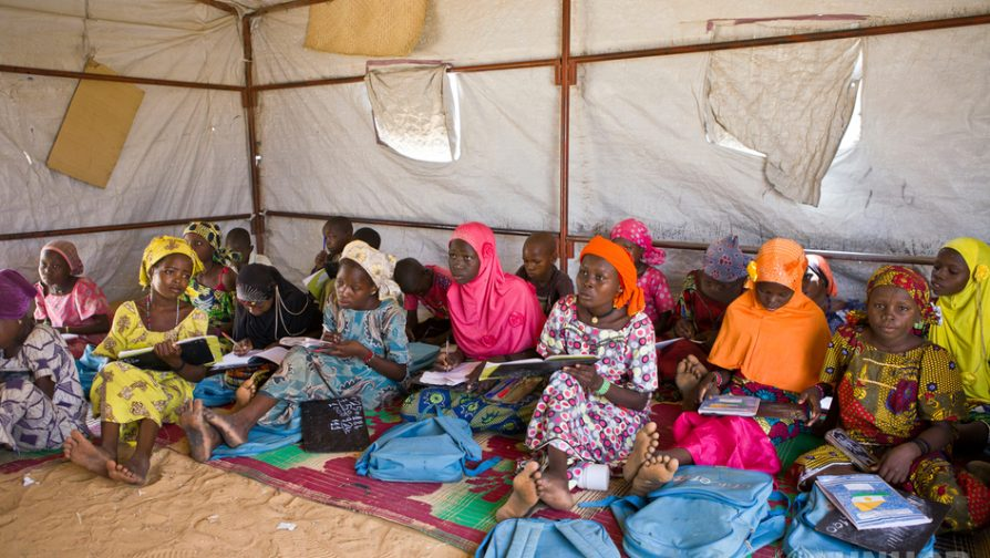 Denmark funds emergency response for the recent displacement crisis in Diffa, Niger