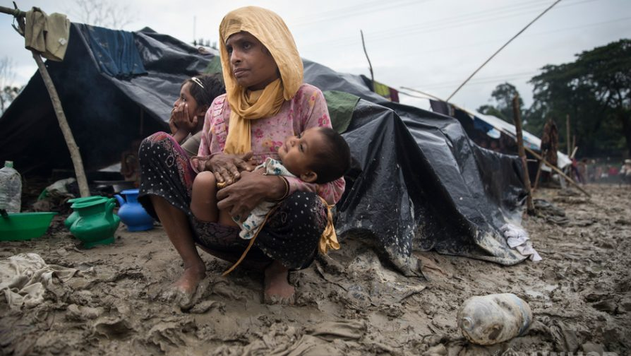 Denmark supports UNHCR with USD 6.3 million to meet critical needs of Rohingya refugees