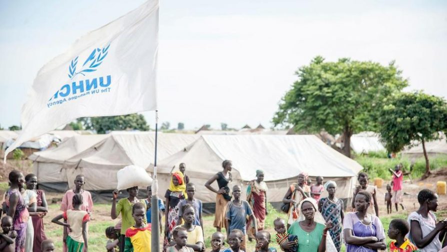 Danish Ambassador to the UN: Unrestricted funding is essential for refugee responses