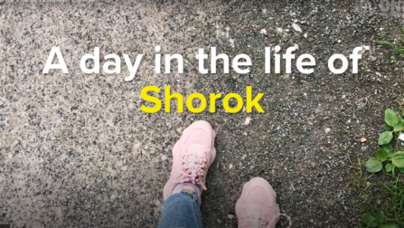 Day in the Life of Shorok