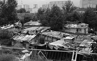Appeal To The Government Of The Republic Of Serbia: Assistance In Food For The Most Vulnerable Urgently Needed