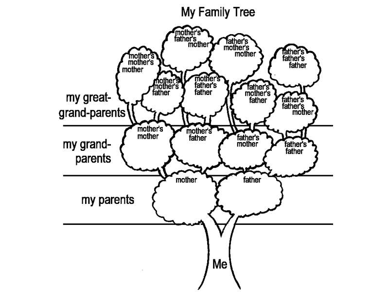 Activity Sheet: My Family Tree. (Teaching about refugees. History ...