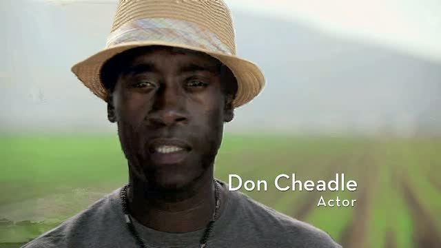UNEP PSA - Seal The Deal 2009