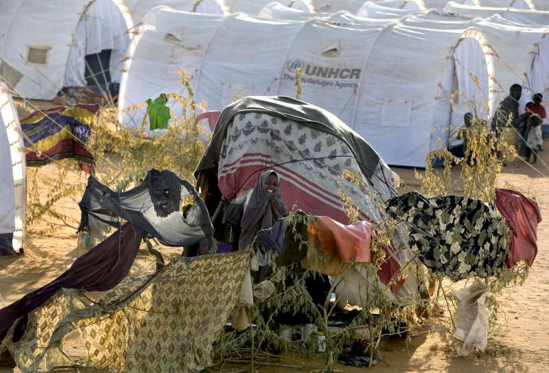 A makeshift shelter in the new arrivals area of the crowded Dadaab […]