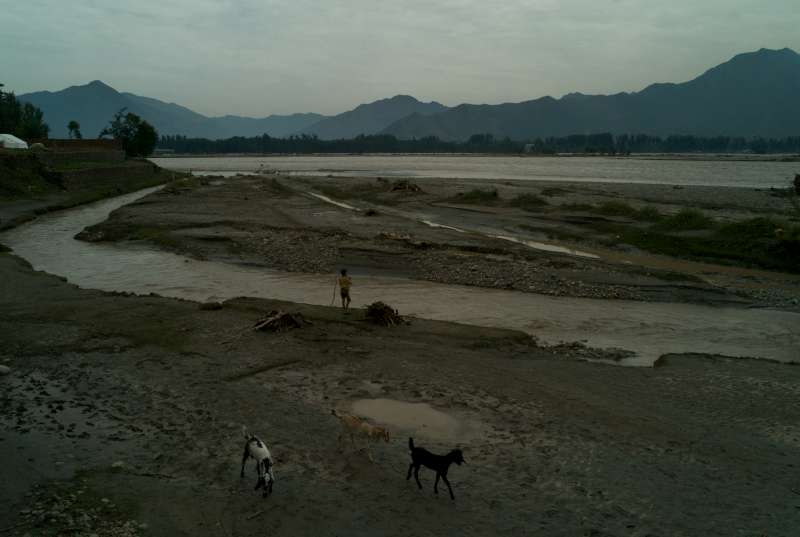 A young goat herder collects driftwood on the muddy shoreline of the Swat River near Chakdara.