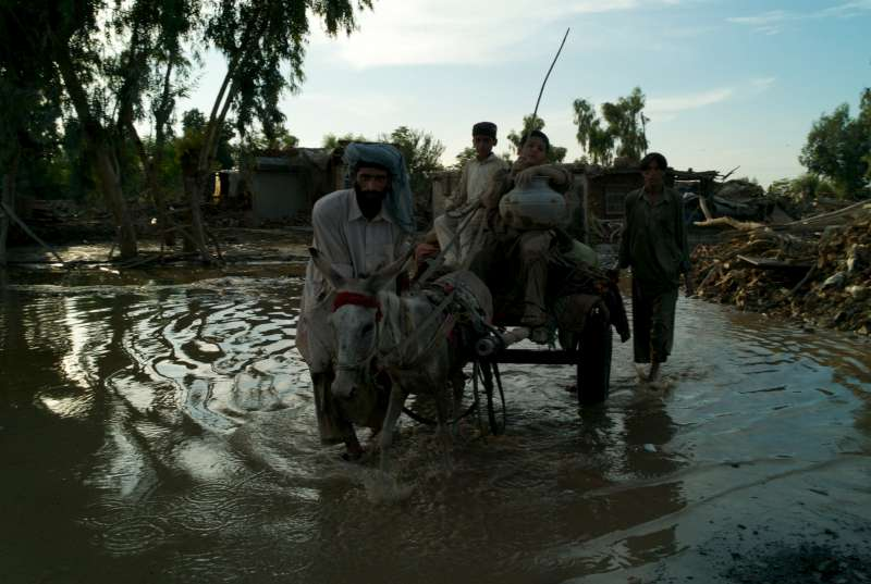 An Afghan family transports their recovered belongings back to their temporary shelter via donkey cart, Pir Pai.