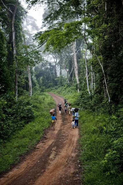 A family of refugees from Côte d' Ivoire walks along a forest […]
