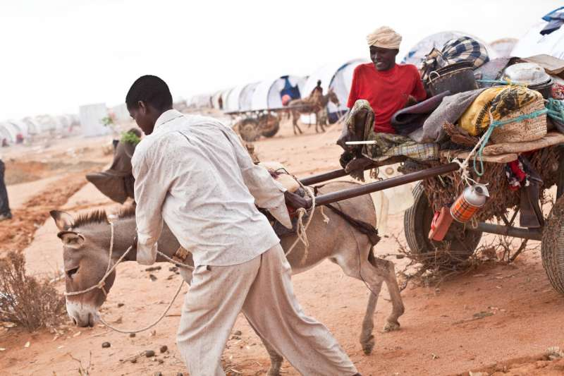 Paralyzed by polio, Muktar, a 31-year-old father of five, is relocated by donkey cart from a temporary settlement into a new tent in Ifo Extension.