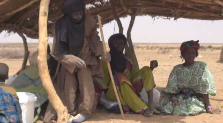 Niger: Aid arrives