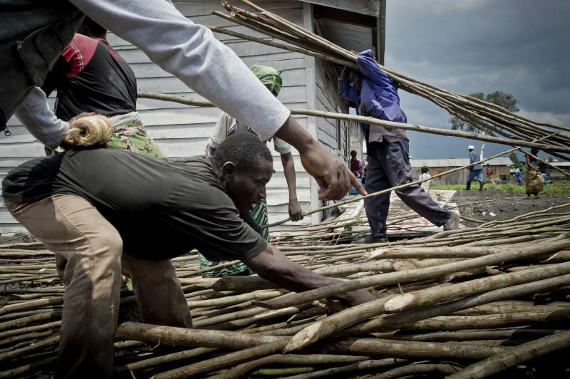 Displaced people select wooden posts at a distribution site in Mugunga III. They use these to construct a home.