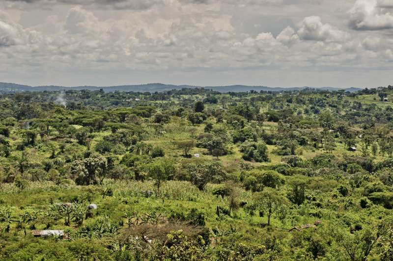 A view across Rwamwanja settlement, which includes more than […]