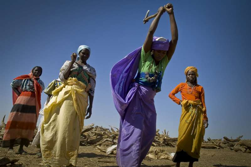 Colourfully dressed refugees from Sudan's Darfur region collect and chop firewood at a distribution point in eastern Chad's Treguine camp. Their situation has become a protracted one.
