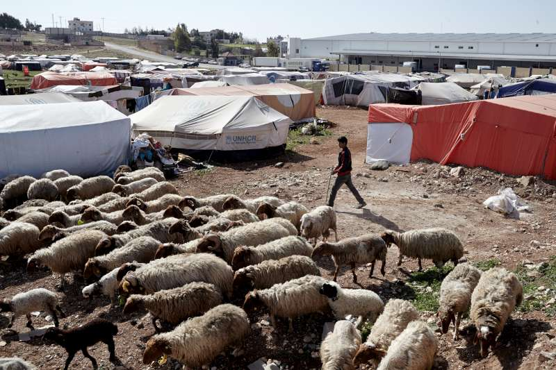 A young shepherd and his sheep cross through the centre of the tented refugee settlement in Kherbet Al-Souk. The settlement popped up nine months ago and houses approximately 500 people, many of them children.