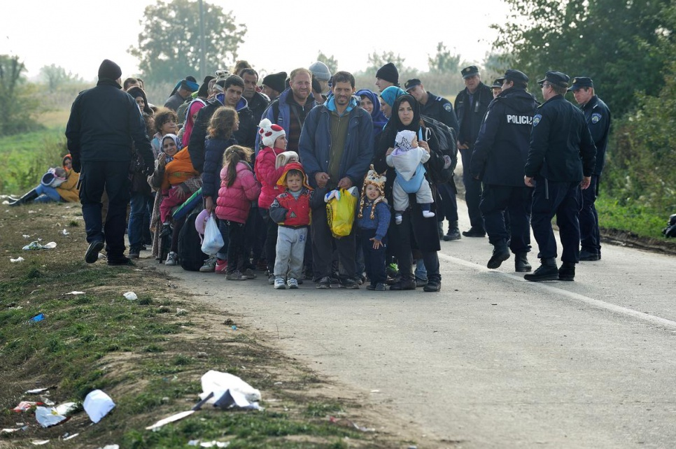 A kilometre from the Croatia/Serbia border, refugees and migrants are organised into a column before boarding buses to Opatovac transit centre.