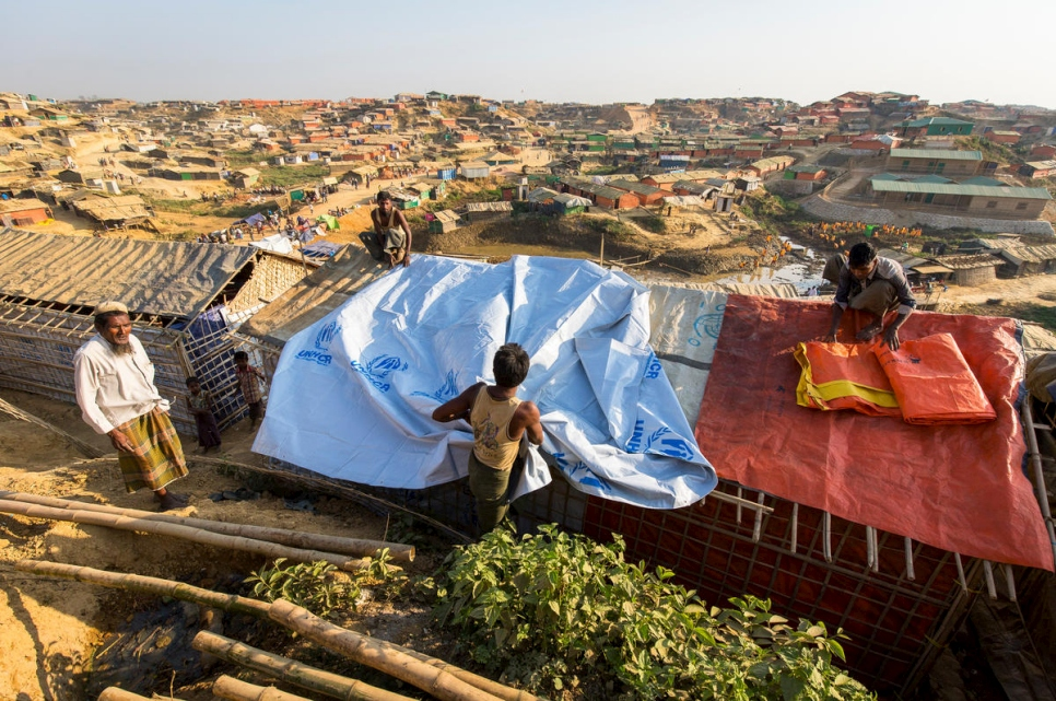 Four men spread tarpaulin's on a roof of a shelter.