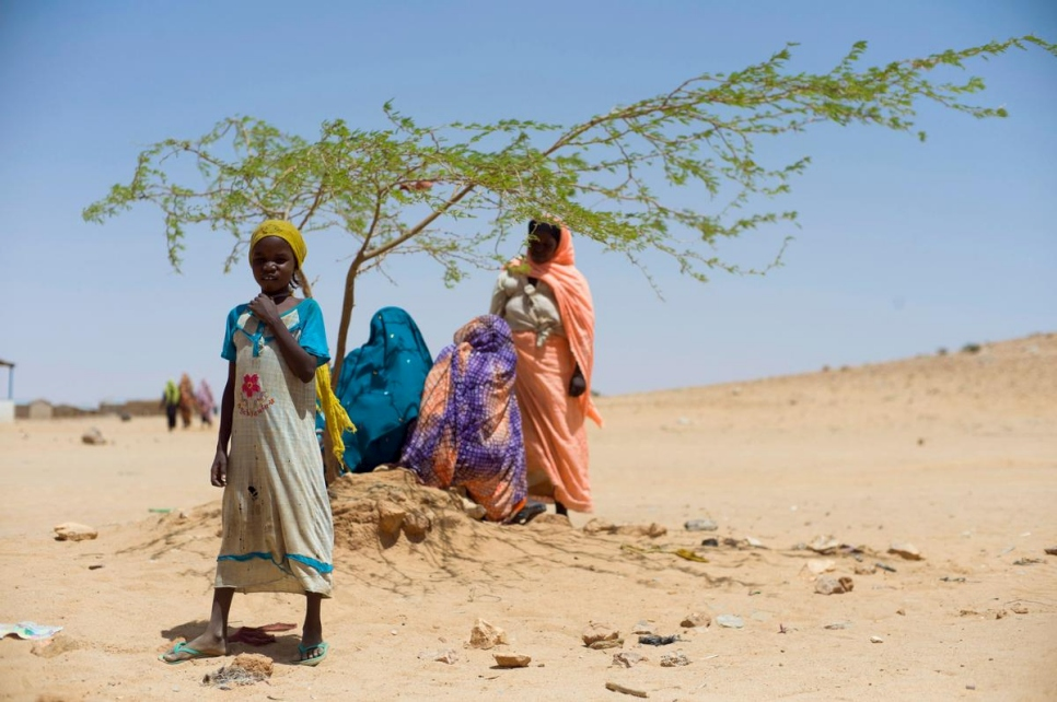 Chad. Hunger and hard choices for Sudanese refugees