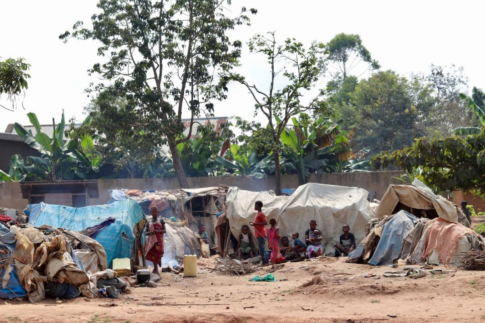 Democratic Republic of Congo. Mbuti IDPs (indigenous community)