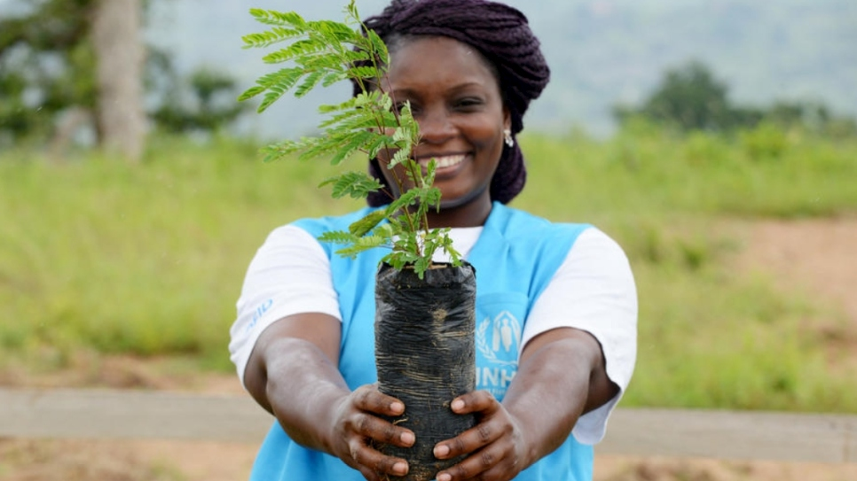 A UNHCR intern holds up a sapling, grown in a nursery at Minawao refugee camp, Cameroon, as part of the reforestation project Make Minawao Green Again.