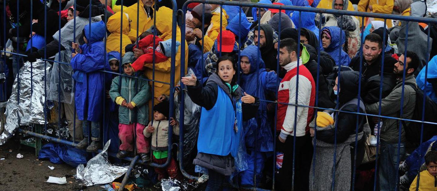 Diana, a UNHCR protection officer, searches the crowd at the Berkasovo border, between Serbia and Croatia, for vulnerable people who need immediate help, including pregnant women, mothers with young children, the elderly and people with disabilities or serious illness.