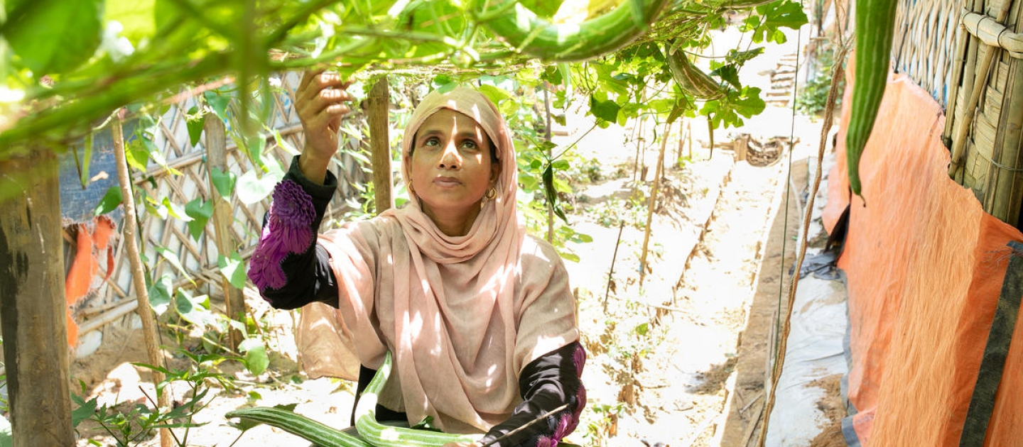 Bangladesh. Sahera plants a garden and harvests fresh vegetables in Kutupalong refugee settlement