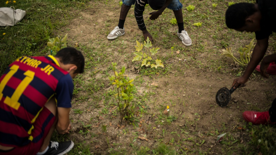Unaccompanied children from Sudan and Afghanistan take part in a gardening lesson, one of many activities on offer at the local shelter for children in Saint-Omer.