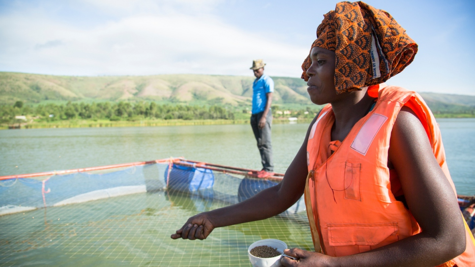 Congolese refugee Janine scatters brown pellets to feed white tilapia in Lake Rwamunga fish farm, in Uganda's Isingiro district.