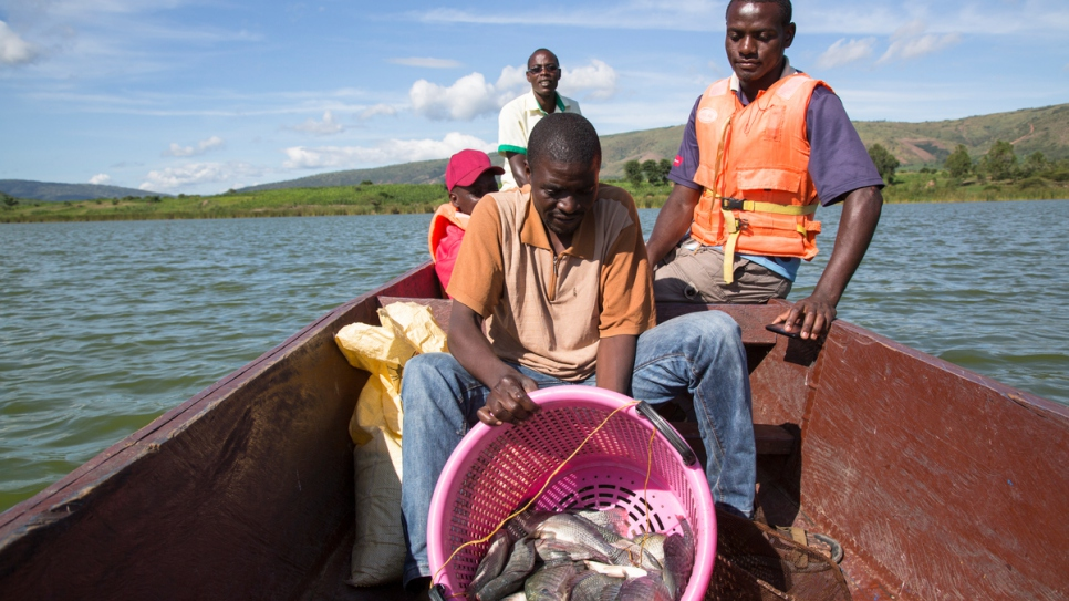 Members of a fish farm group return to shore after catching 40 white tilapia from Lake Rwamunga fish farm in Uganda's Isingiro district.