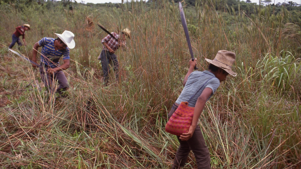Former refugees clear a field in 1989, after returning home to Guatemala.