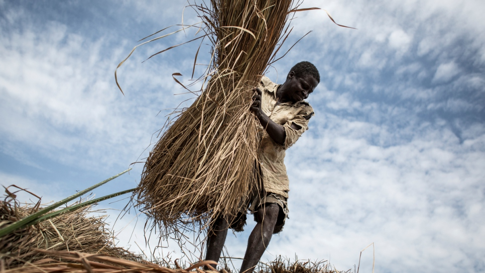 A Central African refugee constructs a roof for his new house.
