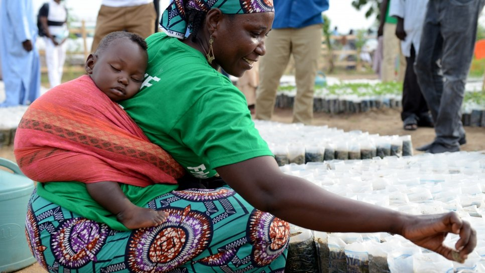 A Nigerian mother carrying her baby on her back plants seeds in a nursery at Minawao refugee camp in Cameroon, as part of the reforestation project, Make Minawao Green Again.