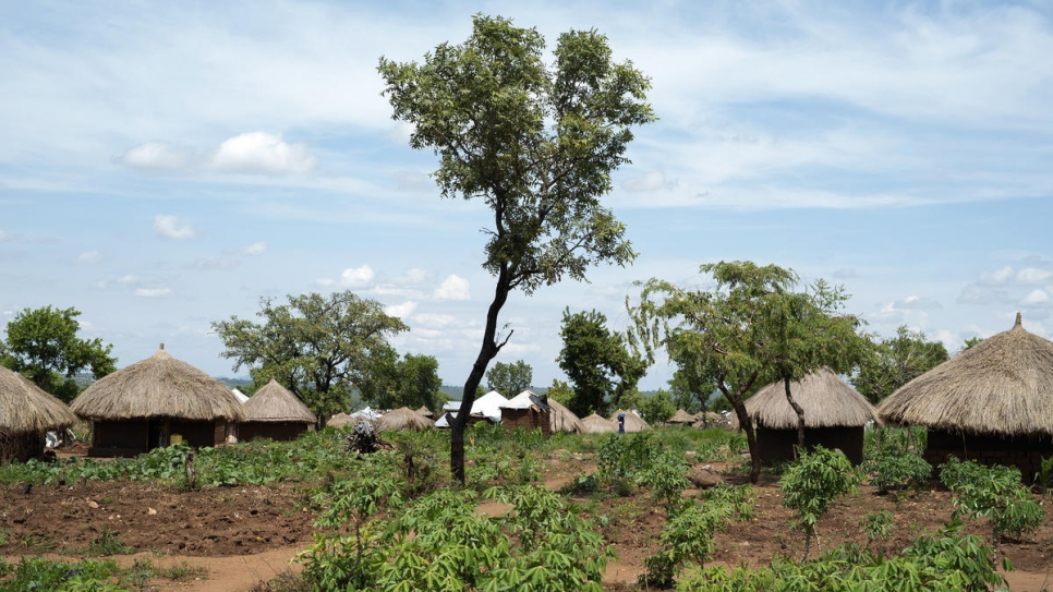 A view of Omugo village where a tree planting project founded by UNHCR has started.