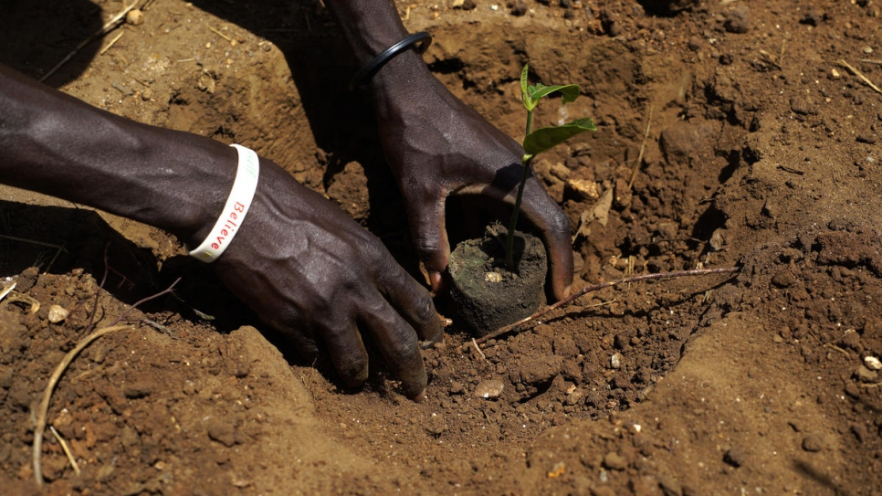 "Abraham plants a tree outside his house. ""Planting trees is important because trees are life,"" he says."