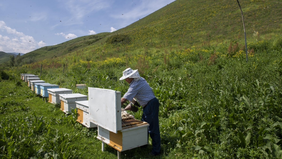 Abdusamat checks on one of his hives in the foothills of Kyrgyzstan's mountains.
