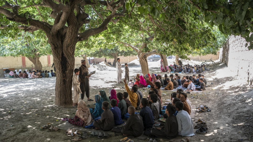 Pupils sit beneath the shade of mulberry trees in the village of Qarabagh, near the capital Kabul.