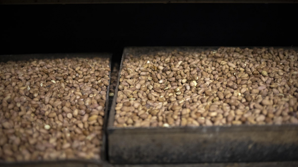 Trays of roasted peanuts on display at Congolese refugee Grace's business in Pretoria, South Africa.