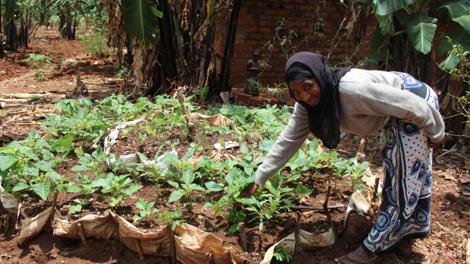 A woman in Kigoma refugee camp in Tanzania works on a vegetable production project that aims to diversify diets and improve nutrition.