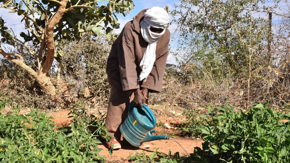 Alijy AlHussein Cisse, a Malian refugee, waters plants in one of Mbera camp's vegetable gardens.