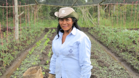 Colombia ceasefire throws displaced lives into focus – Maria's story