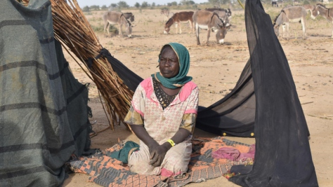 Chad. Violence in West Darfur forces thousands of Sudanese across border